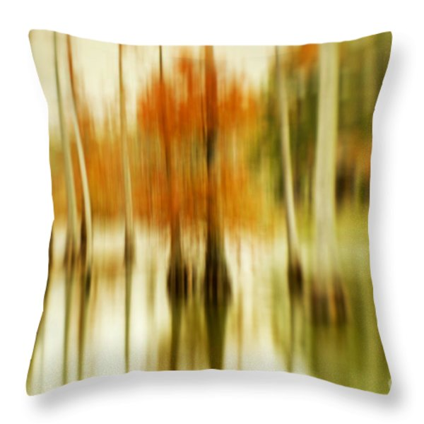 Cypress Morning Throw Pillow by Scott Pellegrin