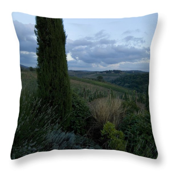 Cypress Trees Growing In The Rolling Throw Pillow by Todd Gipstein