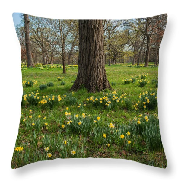 Daffodil Glade Number 2 Throw Pillow by Steve Gadomski