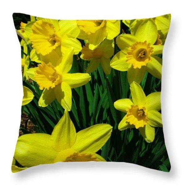 Daffodils 2010 Throw Pillow by Anna Villarreal Garbis