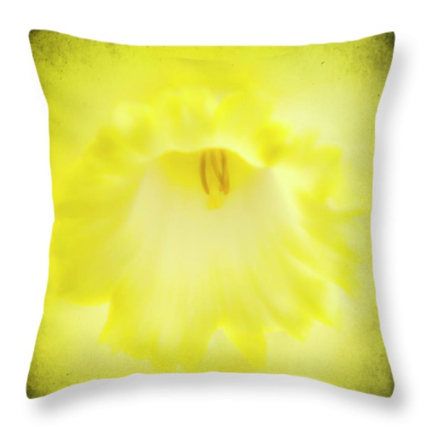 Daffodils Are Yellow Throw Pillow by Meirion Matthias