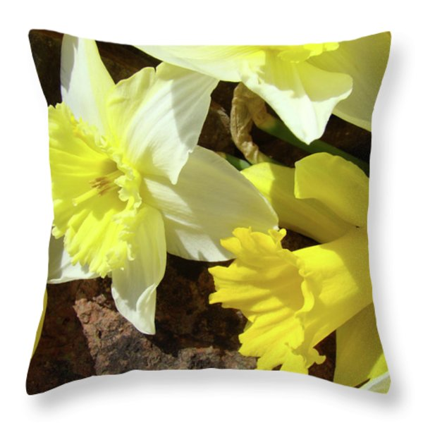 DAFFODILS FLOWER BOUQUET Rustic Rock Art Daffodil Flowers Artwork Spring Floral Art Throw Pillow by Baslee Troutman Art Prints Giclee