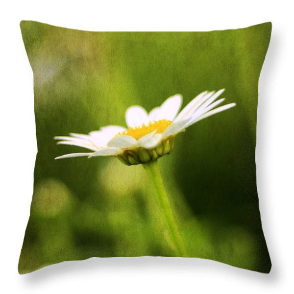 Daisy Throw Pillow by Darren Fisher
