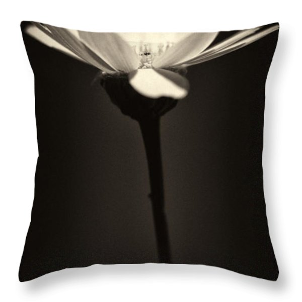 Daisy Flower Monochrome Throw Pillow by Stylianos Kleanthous