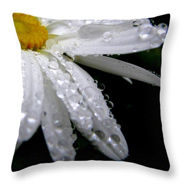 Daisy Study No. 4 Throw Pillow by Sandy Rubini