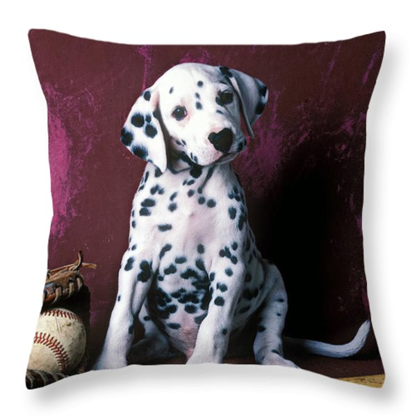 Dalmatian puppy with baseball Throw Pillow by Garry Gay