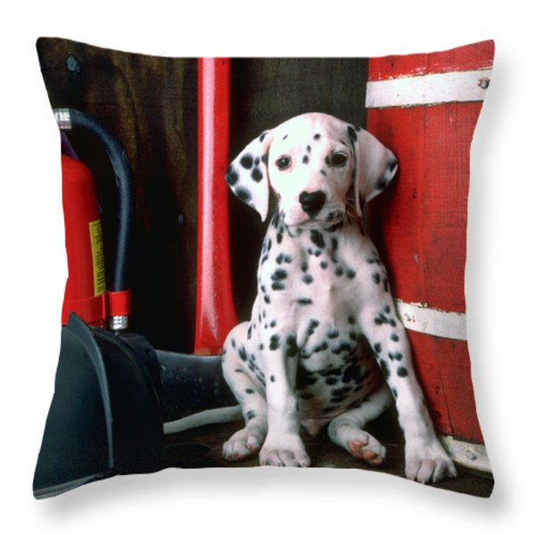 Dalmatian puppy with fireman's helmet  Throw Pillow by Garry Gay