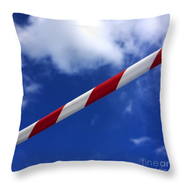 Danger Throw Pillow by BERNARD JAUBERT