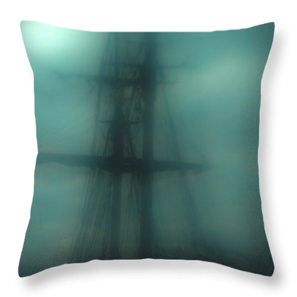 Dangerous Waters Throw Pillow by Andrew Paranavitana