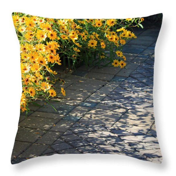 Dappled Light II Throw Pillow by Suzanne Gaff