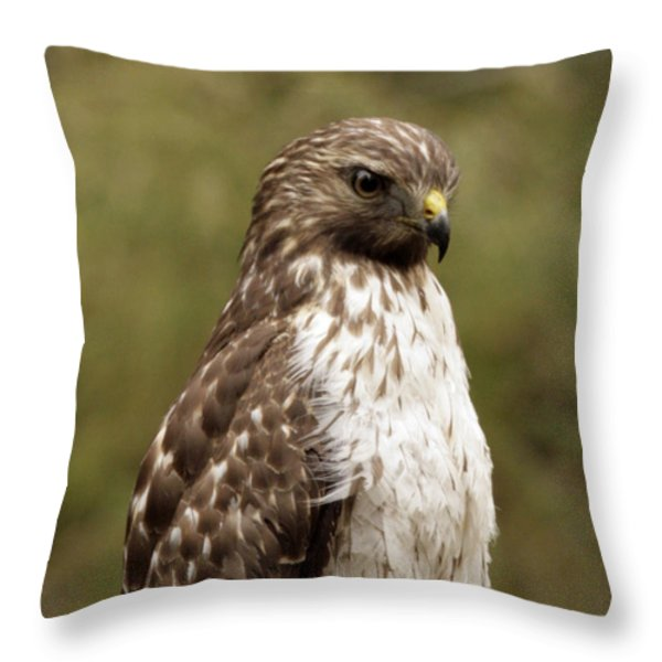 Dark Beauty Throw Pillow by Phill  Doherty