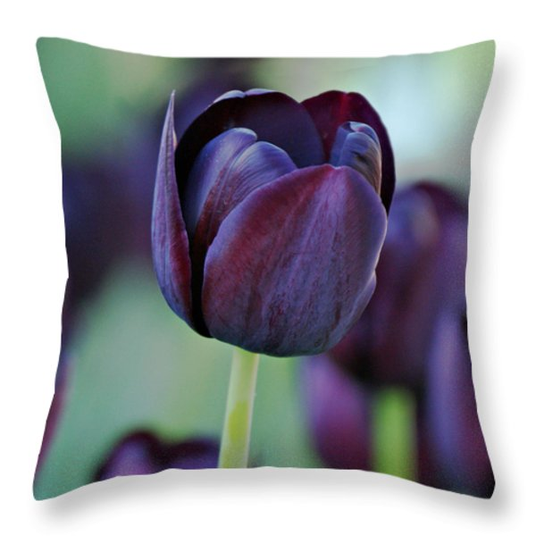 Dark Purple Tulip Throw Pillow by Sandy Keeton
