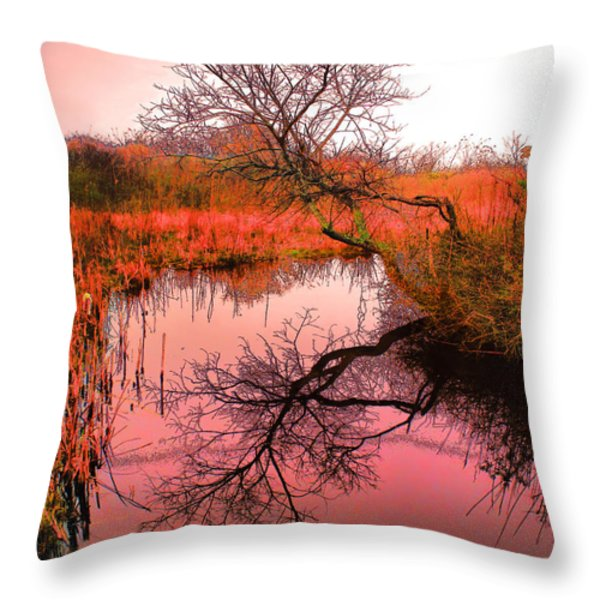 Dawn On The Marsh Throw Pillow by Nick Zelinsky