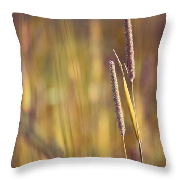 Day Whisperings Throw Pillow by Aimelle