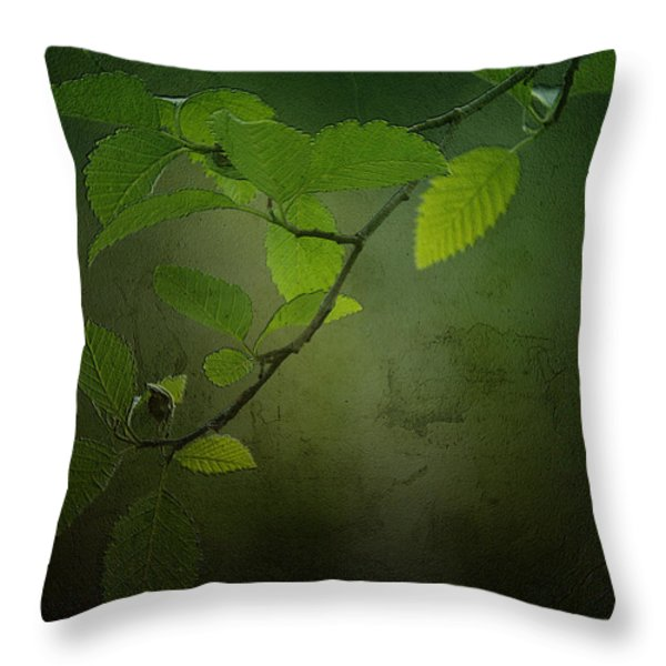 Daybreak Tiptoes In Throw Pillow by Bonnie Bruno