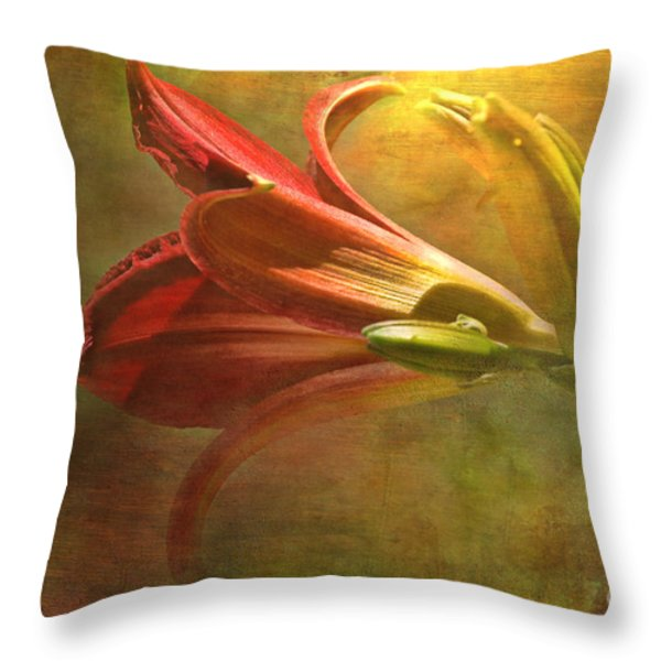Daylily Photoart With Texture II Throw Pillow by Debbie Portwood
