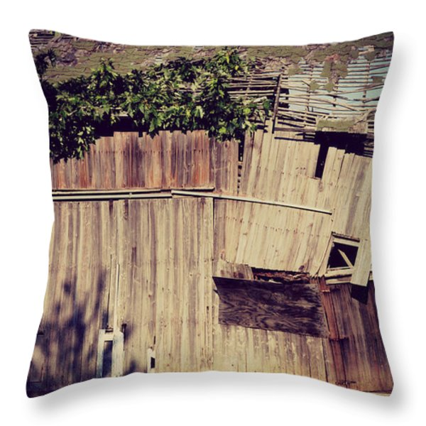 Days Gone By Throw Pillow by Paulette B Wright