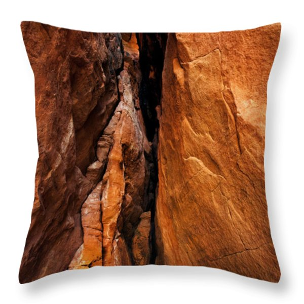 Dead End Throw Pillow by Mike  Dawson