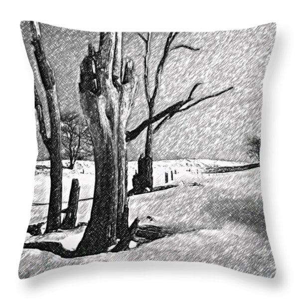 Dead Of Winter Throw Pillow by Steve Harrington
