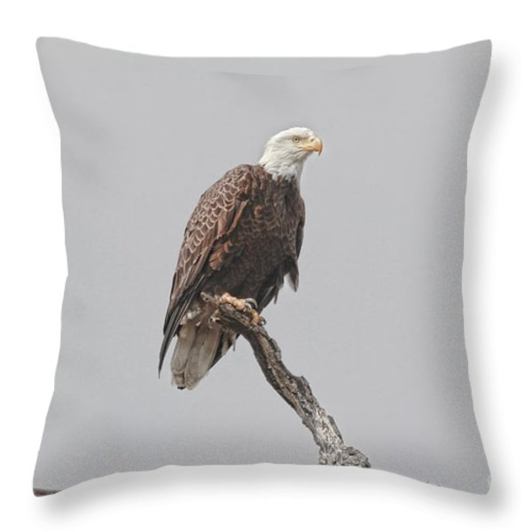 Dead Tree Pose Throw Pillow by Deborah Benoit