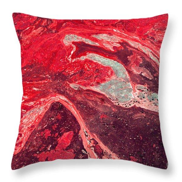 Death by oil slick Throw Pillow by Frank Larkin
