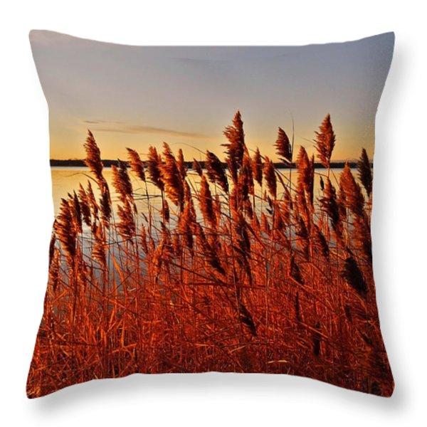 December Sunrise ... Throw Pillow by Juergen Weiss