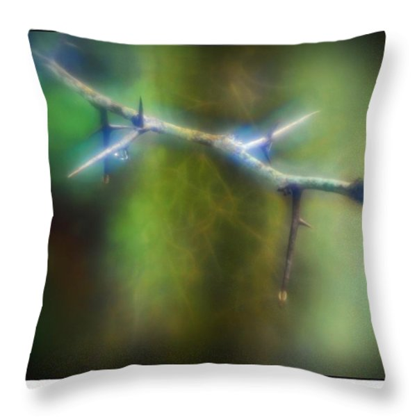 Deep In The Bayou Throw Pillow by Judi Bagwell