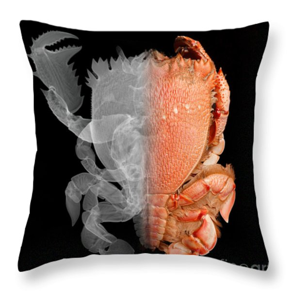 Deep Water Crab X-ray And Optical Image Throw Pillow by Ted Kinsman
