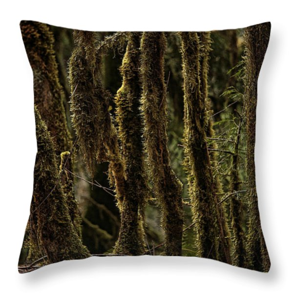 Deep Woods Throw Pillow by Bonnie Bruno