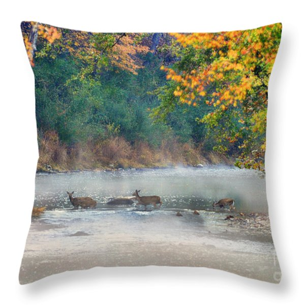 Deer Crossing River Throw Pillow by Dan Friend