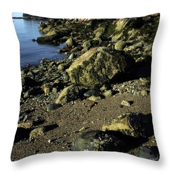 Deer Isle And Barred Island Throw Pillow by Thomas R Fletcher