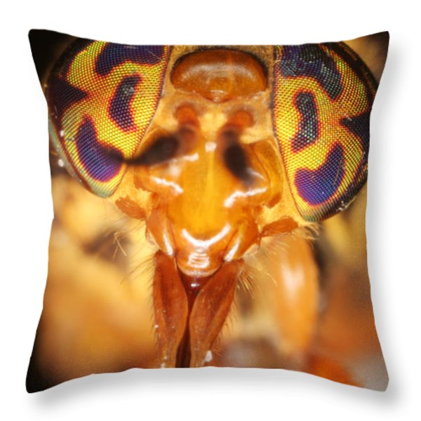 Deerfly Throw Pillow by Ted Kinsman