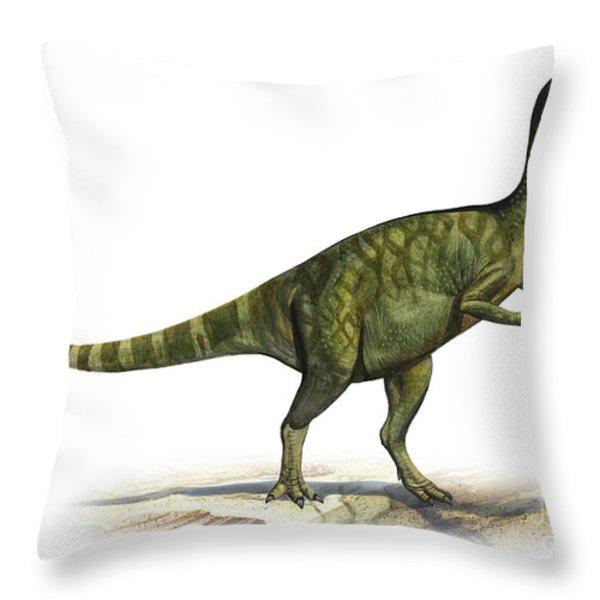 Deinocheirus Mirificus, A Prehistoric Throw Pillow by Sergey Krasovskiy