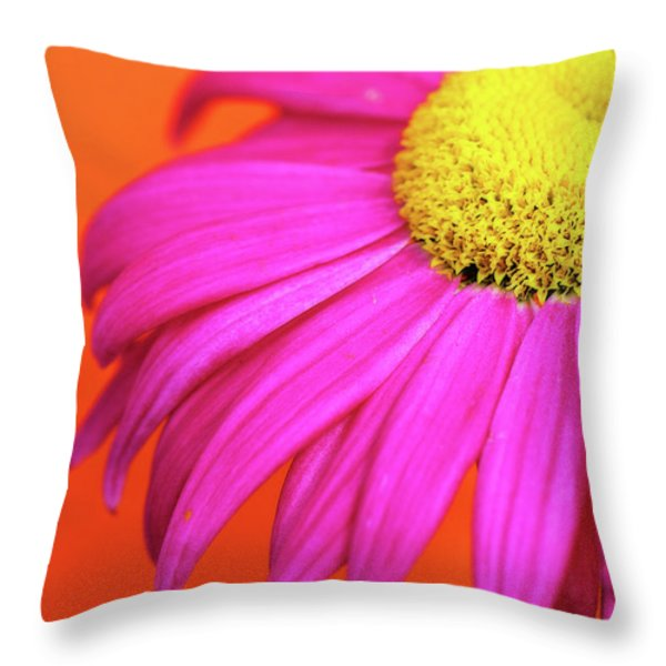 Delight Throw Pillow by Lisa Knechtel
