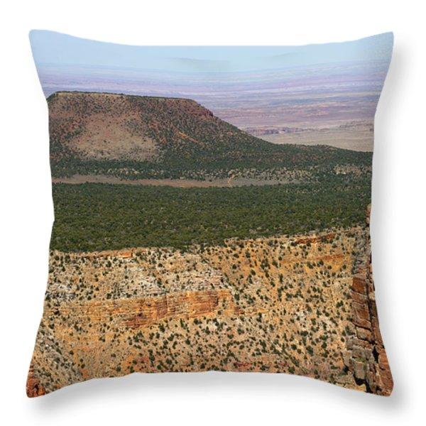Desert Watch Tower View Throw Pillow by Julie Niemela