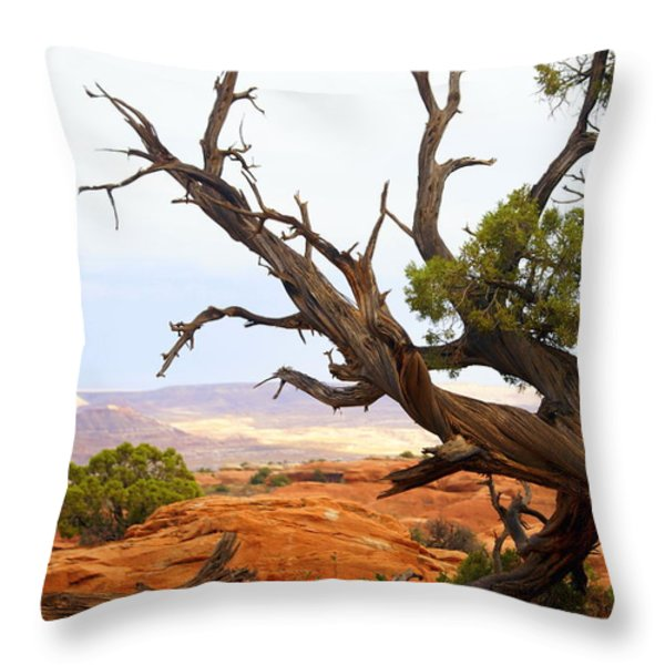 Devils Garden 2 Throw Pillow by Marty Koch