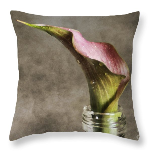 Dew Of A Lily Throw Pillow by Darren Fisher