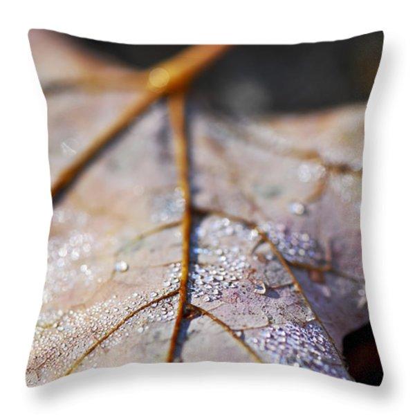 Dewy Leaf Throw Pillow by Elena Elisseeva