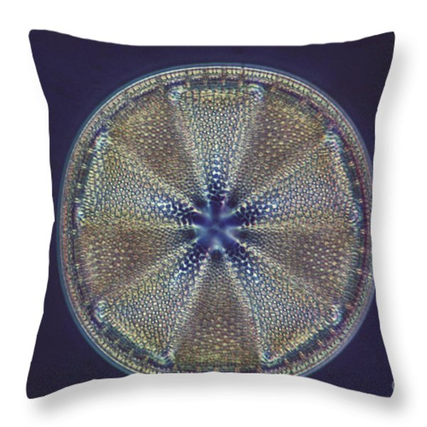 Diatom - Actinoptychus Heliopelta Throw Pillow by Eric V. Grave