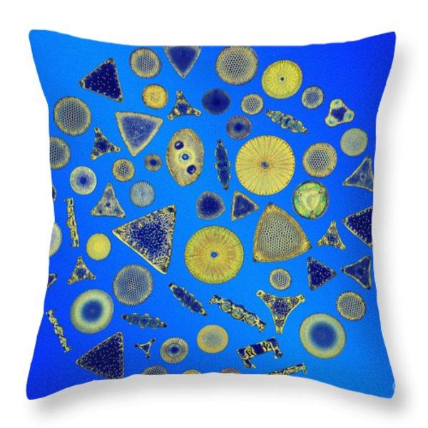 Diatom Arrangement Throw Pillow by M I Walker