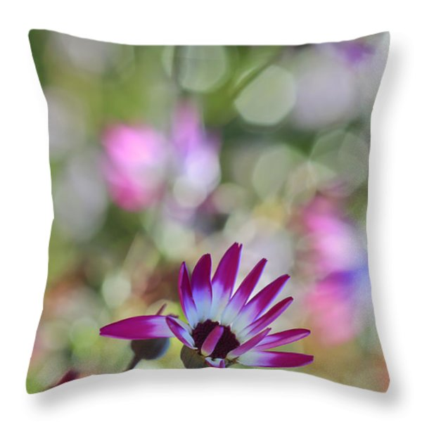 Different Throw Pillow by Heidi Smith