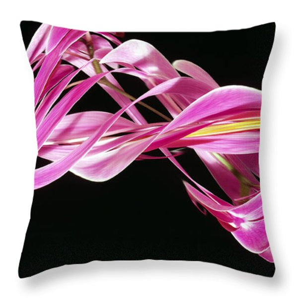 Digital Streak Image Of An Orchid Throw Pillow by Ted Kinsman