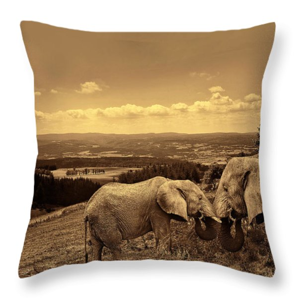 Dignified Rank Throw Pillow by Lourry Legarde