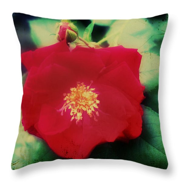 Dirty Rose Knows Throw Pillow by Bill Cannon