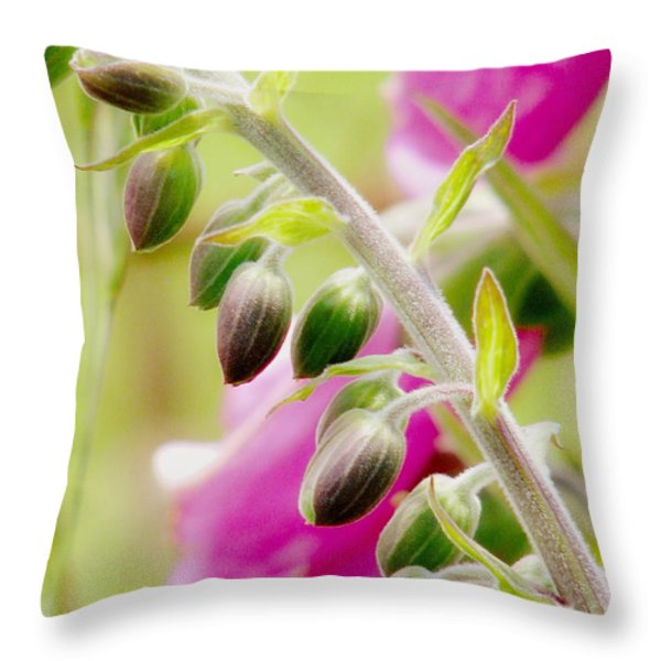 Discussing When To Bloom Throw Pillow by Rory Sagner