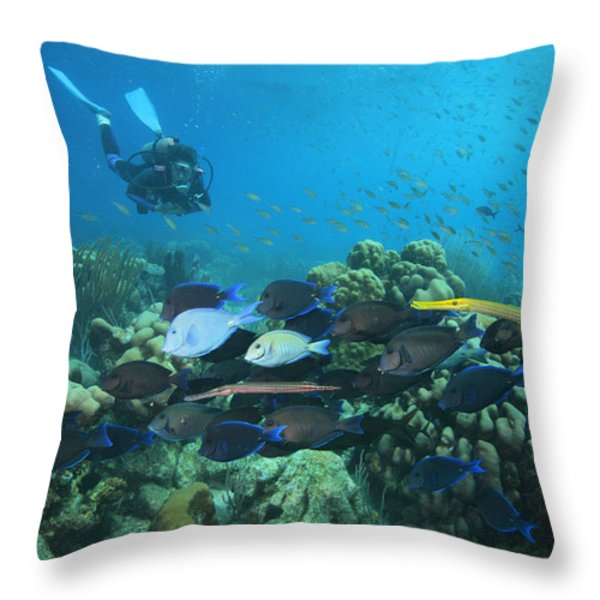 Diver Watching Blue Tangs, Doctorfish Throw Pillow by George Grall