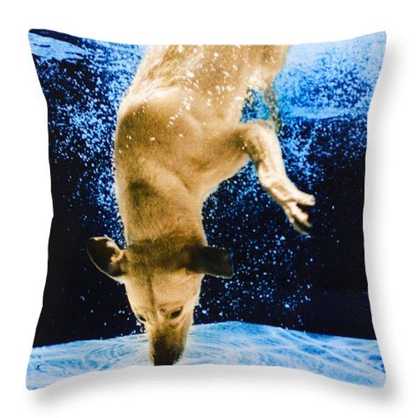 Diving Dog 3 Throw Pillow by Jill Reger