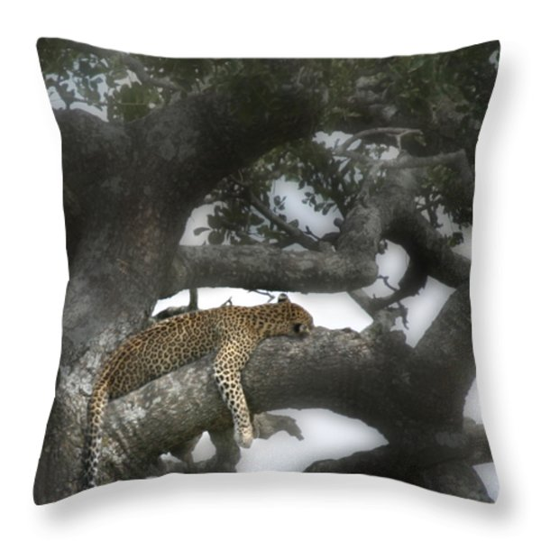 Do Not Disturb Throw Pillow by Joseph G Holland