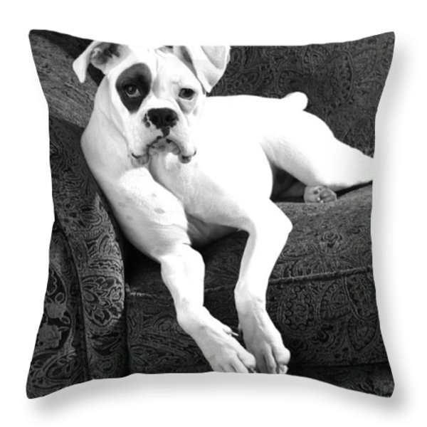 Dog On Couch Throw Pillow by Sumit Mehndiratta