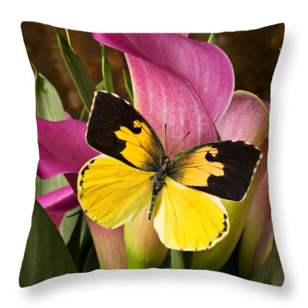 Dogface Butterfly On Pink Calla Lily  Throw Pillow by Garry Gay